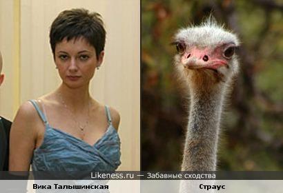 Вика Талышинская (Непара) похожа на страуса