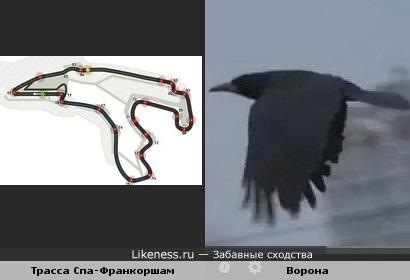 Трасса Спа-Франкоршамв Бельгии похожа на летящую ворону