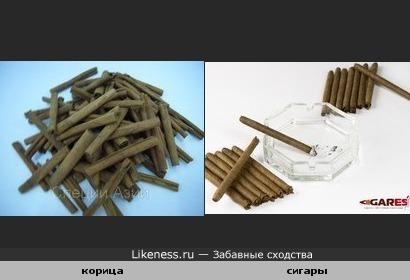 Палочки корицы напоминают сигары.