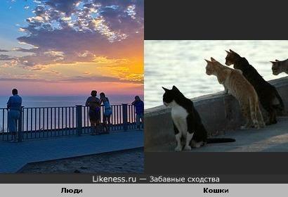 Любители морского пейзажа ).