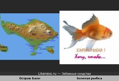 Карта о.Бали похожа на рыбку