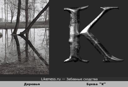 """Отражение деревьев в воде похоже на букву """"К"""""""