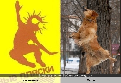 "Фрагмент обложки ""Виниловые пляски"" и фото Вячеслава Зайковского"
