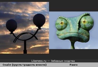 Фото Александра Тарасова и Ранго