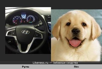 Этот руль напоминает улыбающуюся собаку