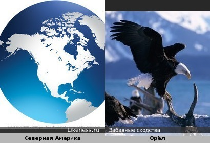 Северная Америка похожа на птицу