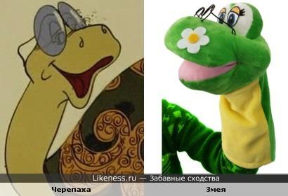 Мягкая игрушка Змея напомнила Большую Черепаху из мультика