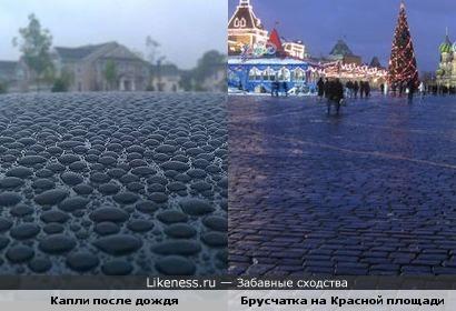 Капли после дождя напомнили брусчатку на Красной площади