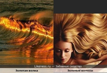 Золотые волны