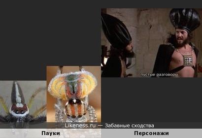 Пауки напомнили персонажей фильма