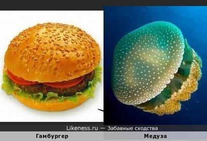 Не ешь гамбургер- станешь большой зелёной медузой