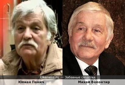Юлиан Панич и Михай Волонтир