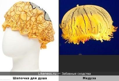 Шапочка - медуза