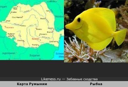 Карта Румынии похожа на рыбку