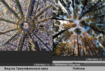 Вид сверху и вид снизу