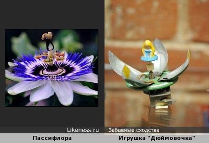 Игрушки- цветы жизни