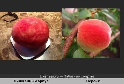 Превращение арбуза