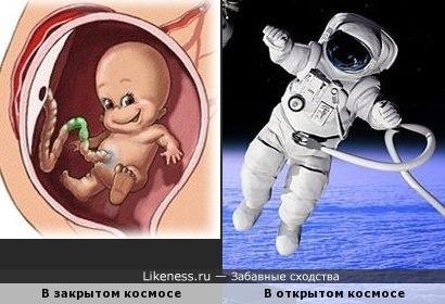 Родившимся 12 апреля 2016