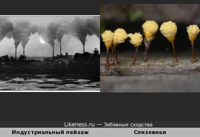 """""""Сквозь фабрик и заводов дым нас трудно разглядеть.."""""""