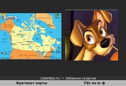 Фрагмент карты и пёс из мультфильма