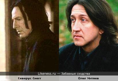 Олег Митяев похож на Северуса Снегга из Гарри Поттера