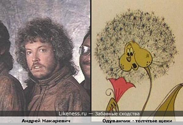 Андрей Макаревич (в старом имидже) похож на Одувачик - толстые щеки
