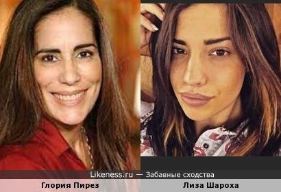 Лиза Шароха из Дома-2 похожа на Глорию Пирез