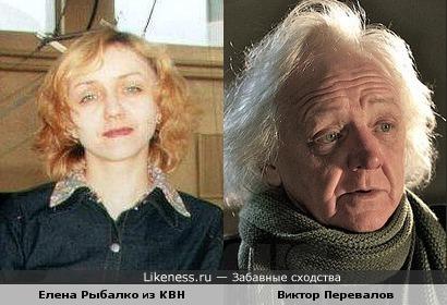 Елена Рыбалко похожа на Виктора Перевалова