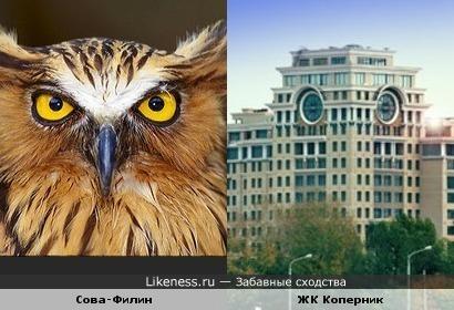 Жилой Комплекс Коперник на Полянке vs Птица