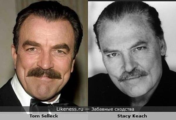 Том Селлек vs Стейси Кич