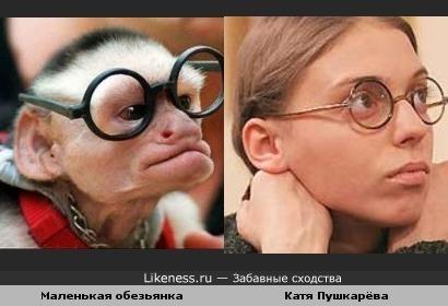 Маленькая обезьянка напоминает Катю Пушкарёву
