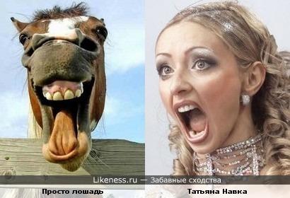 Татьяна Навка и обычная лошадь