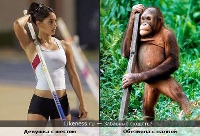 Девушка с шестом и обезьяна с палкой