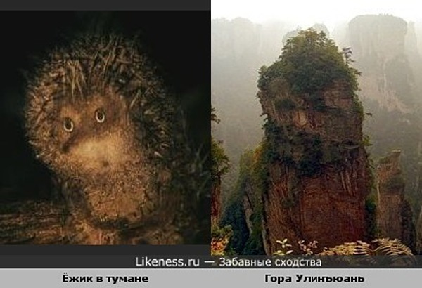 Одна из гор Улинъюаня напомнила ёжика в тумане из одноимённого мультфильма..
