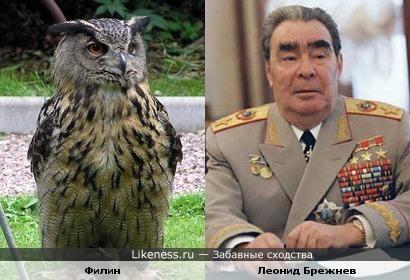 Филин и наш дорогой Леонид Ильич Брежнев