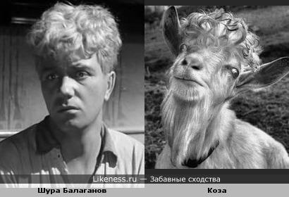 """Шура Балаганов в новом фильме """"Золотой козлёнок"""""""