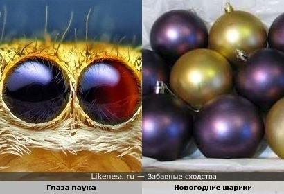 Глаза паука и Новогодние шарики