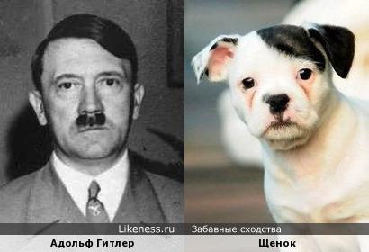 Щенок Патч и Адольф Гитлер