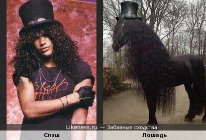 Нашлась лошадь Слэша...