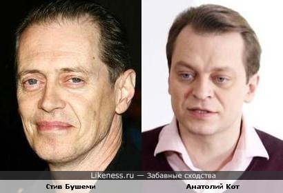 Анатолий Кот похож на Стива Бушеми