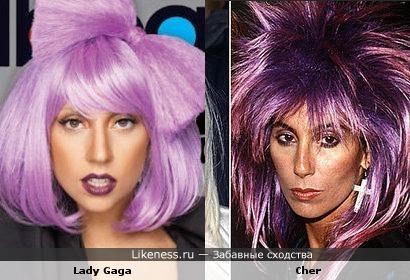 Lilovye Cher i Lady Gaga