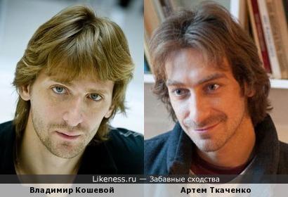 Владимир Кошевой vs Артем Ткаченко