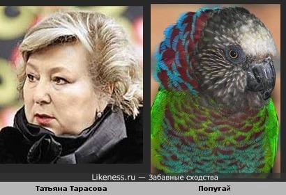 Татьяна Тарасова похожа на попугая
