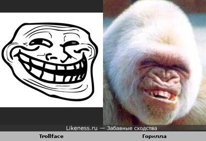 Горила похожа на Trollface
