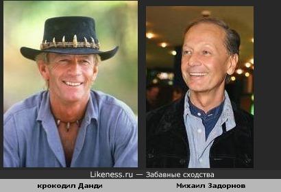 Крокодил Данди и Михаил Задорнов похожи