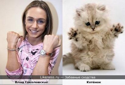 Влад Соколовский и милый котёночек