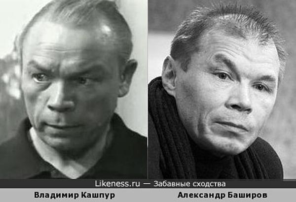 Кашпур и Баширов