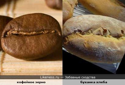 Зерно кофе напоминает хлеб