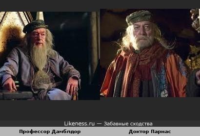 Дамблдор похож на доктора Парнаса