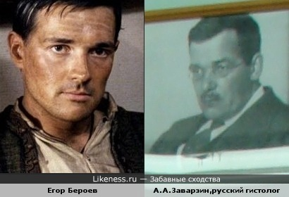 Егор Бероев похож на русского гистолога А.А.Заварзина